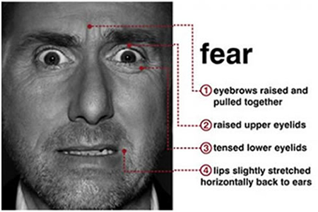 l'expression de la peur