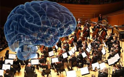 La neuro-symphonie du stress